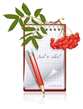 ashberry: Vector illustration. Back to school! Illustration