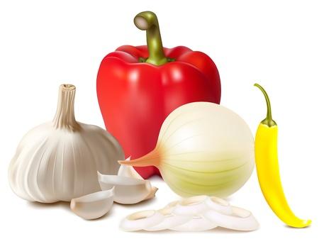 pimenton: Vector fotorrealista. Conjunto de especias: pimentón, ají, ajo, cebolla. Vectores