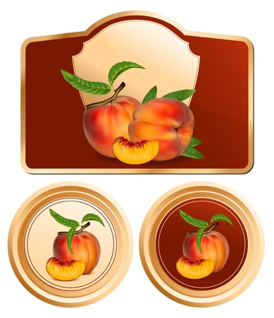 photorealistic: Vector. Background for design of packing jam jar with photo-realistic peaches. Illustration