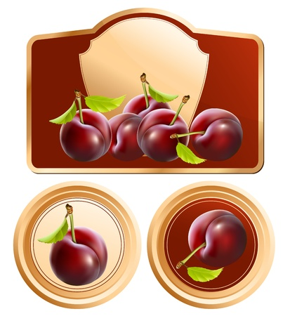 fruit jam: Vector. Background for design of packing jam jar with photo-realistic plums.