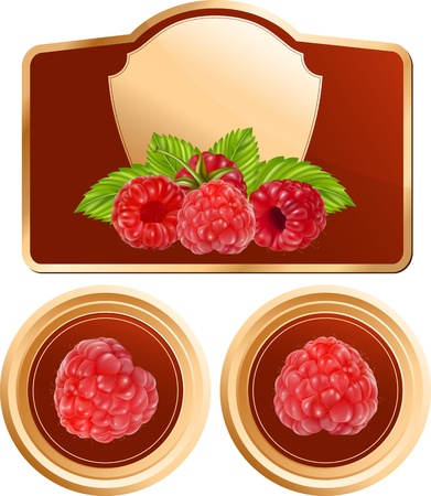 photorealistic: Vector. Background for design of packing jam jar with photo-realistic vector raspberry. Illustration