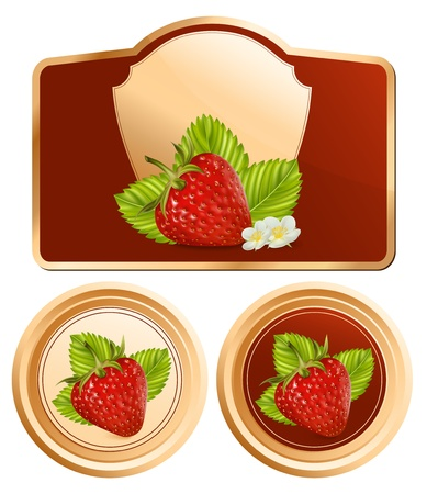 photorealistic: Vector. Background for design of packing jam jar with photo-realistic vector red strawberry. Illustration