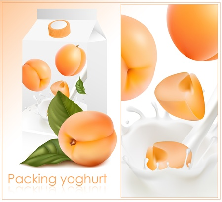 dipping: Vector illustration. Background for design of packing yogurt with photo-realistic vector of apricot.  Illustration