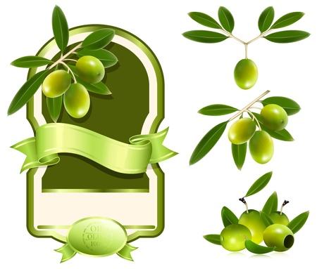 olive green: Label for product. Olive oil. Green olives.