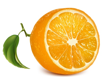 citruses: Vector fresh ripe orange with leaf.