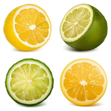 lime slice: Vector citrus fruits  lime and lemon.