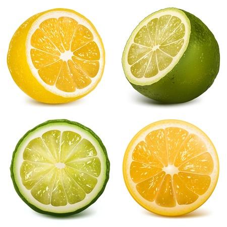 Vector citrusvruchten limoen en citroen. Vector Illustratie