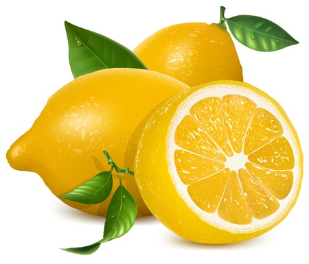 citric: Fresh lemons with leaves Illustration