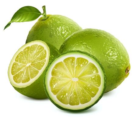 Świeże limonki z liści Ilustracje wektorowe
