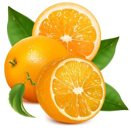 orange slice: Verse rijpe sinaasappelen met bladeren Stock Illustratie