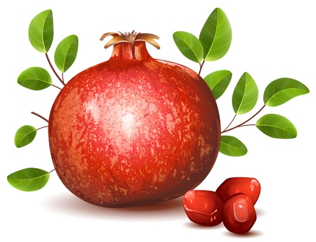 antioxidant: Pomegranate with leaves