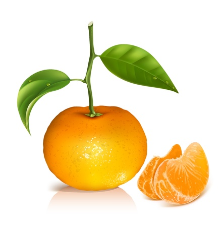 Fresh tangerine fruits with green leaves