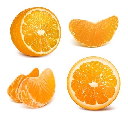naranjas: Frescas naranjas maduras Vectores