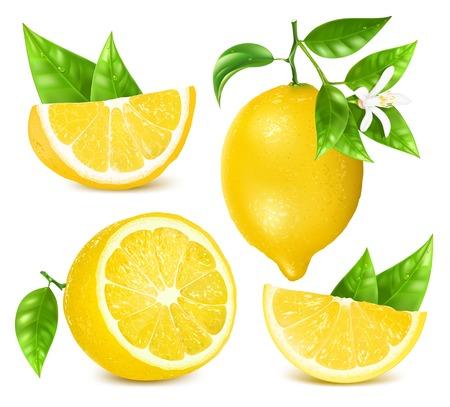 limón: Limones frescos con hojas y flores.
