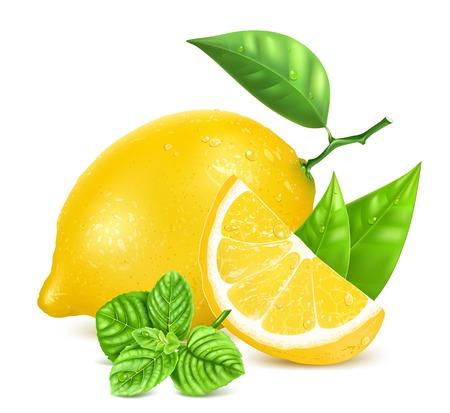 Świeże cytryny z liśćmi i mennicy.