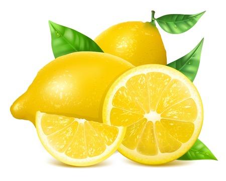 Fresh lemons with leaves. Vector
