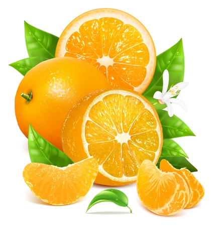 orange color: Fresh lemons with leaves and blossom. Illustration