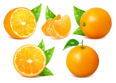 naranja color: Naranjas maduras frescas con las hojas. Vectores