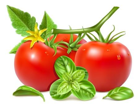 tomato slice: Tomatoes