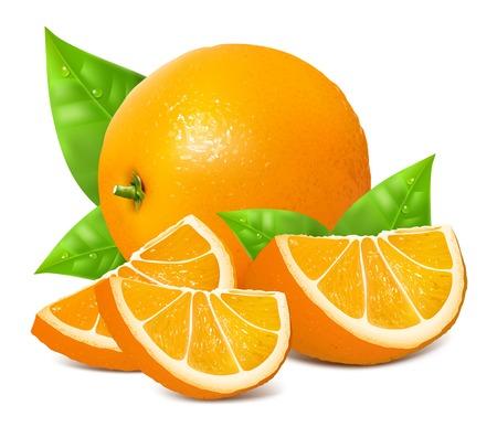 Frescas naranjas maduras Ilustración de vector