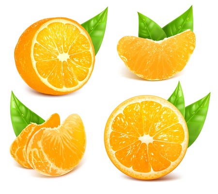 naranja fruta: Frescas naranjas maduras Vectores