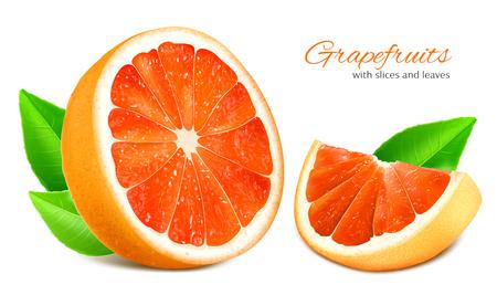 fully editable: Ripe grapefruits with leaves. Vector illustration. Fully editable handmade mesh.