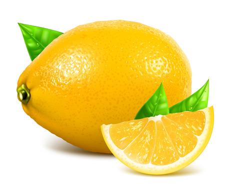 fully editable: Fresh lemons with leaves. Vector illustration. Fully editable handmade mesh.