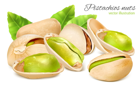 salty: Vector illustration of pistachio nuts with leaves.