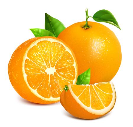 ripe: Vector illustration of fresh ripe oranges.