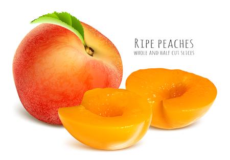 Ripe peaches, whole and half cut slices. Fully editable handmade mesh.  Vector illustration. Illustration