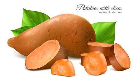 Sweet potato with slices and leaves. Fully editable handmade mesh. Vector illustration. Stock Illustratie