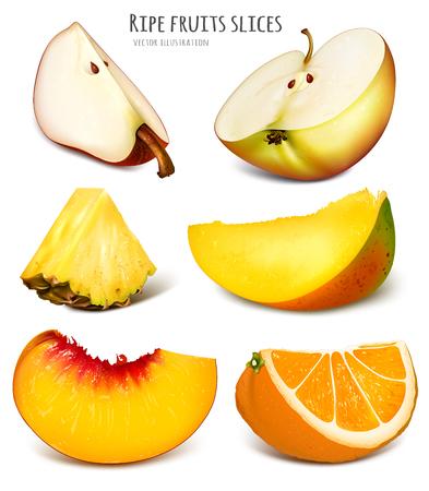 mango slice: Slices of fresh fruits. Fully editable handmade mesh. Vector illustration.