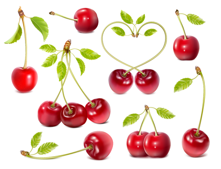 red leaves: Collection of ripe red cherries with leaves. Three, one and tow cherries. Fully editable handmade mesh. Vector illustration.