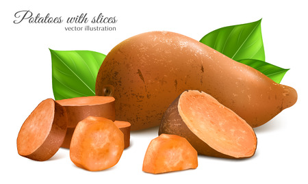 Sweet potatoes with slices and leaves. Fully editable handmade mesh. Vector illustration.