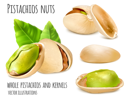 Pistachio nuts. Иллюстрация