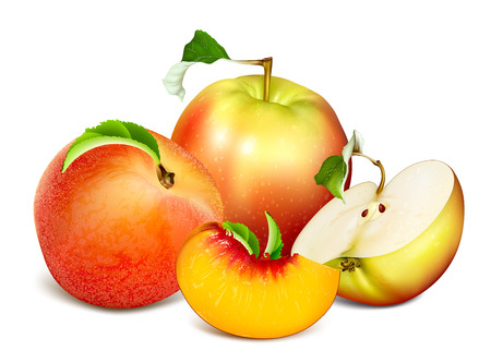 Ripe fresh fruits: apples and peaches. Fully editable handmade mesh. Vector illustration.