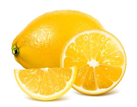fully: Fresh lemons. Vector illustration of lemons and lemon slices. Fully editable handmade mesh.