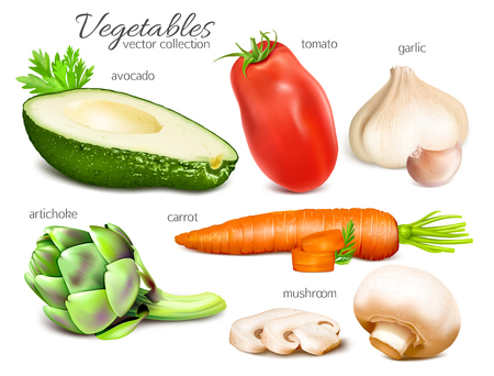 Vegetables. Collection of vector illustrations.