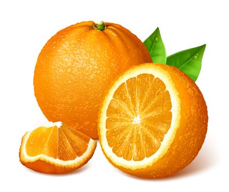 Naranjas enteras y rodajas. Ilustración vectorial Vectores