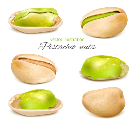 Pistachio. Whole nuts and pistachio kernels. Collection of vector illustration.