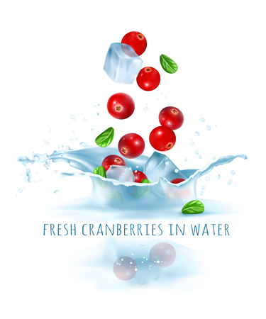 Fresh cranberries and ice cubes falling to water.