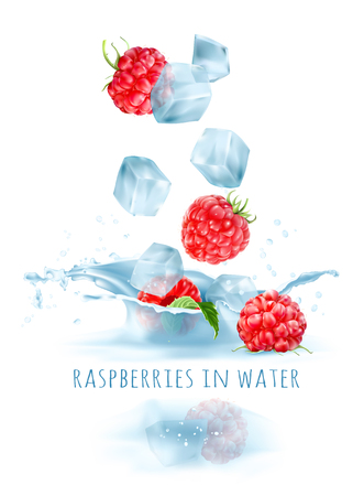 Ripe raspberries and ice cubes falling to water. Vector illustration. Иллюстрация