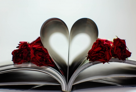 heart from book with rose wither Stock Photo