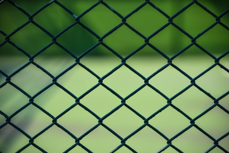 net in green background photo