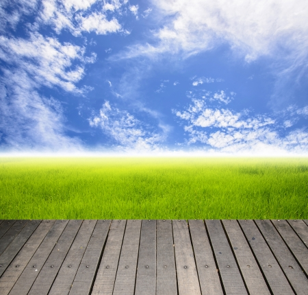 Balcony and grass field with sky nobody