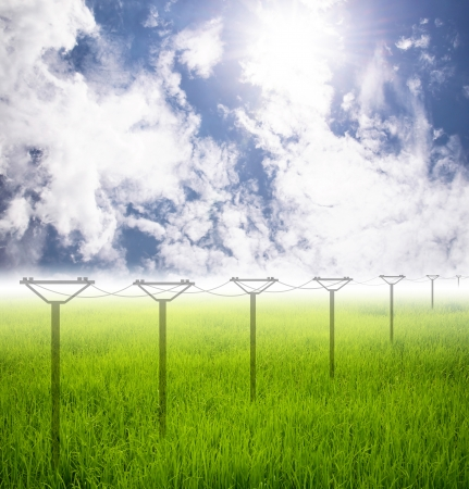 grass field and electricity post on Future Stock Photo - 22159646