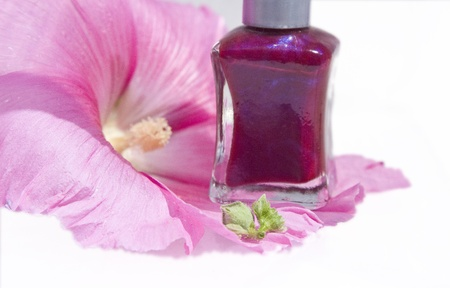 tine: Nail polish bottle on a pink flower with tine  accent of green leaf