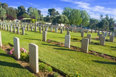 The rows of grey tombstones on the green field of a graveyard.