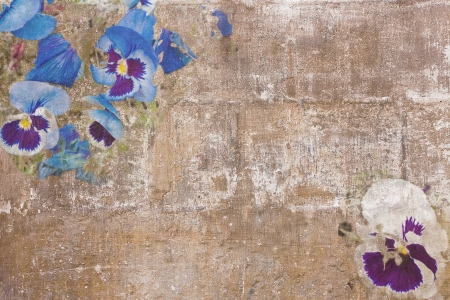 Old paint texture with various pansies