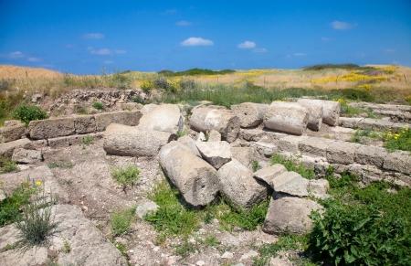 Beatiful summer meadow with Roman ruins (in Tel Dor, Israel) Stock Photo - 20196114
